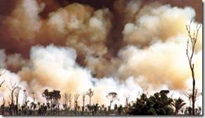 Queimadas na Amazônia copy