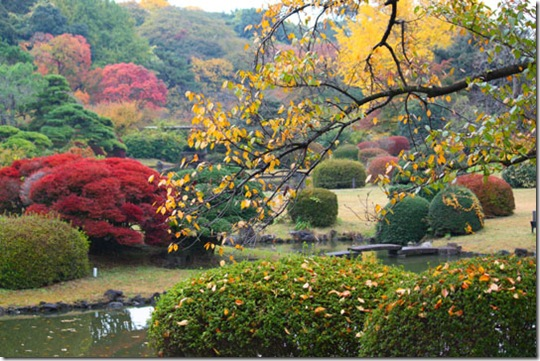 Jardim Botânico de Koishikawa - foto de Kit Nagamura