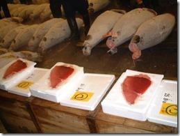 bluefin-tuna-grading-19771