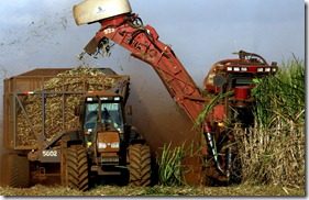 colheita-mecanizada2