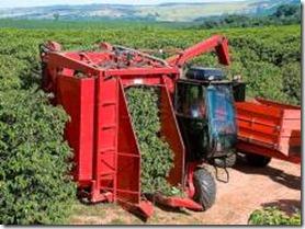 cafeicultores-contam-com-recursos-para-aquisicao-de-tratores-e-implementos-agricolas