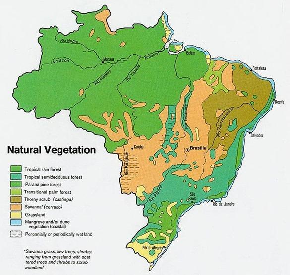 632px-Brazil_veg_1977